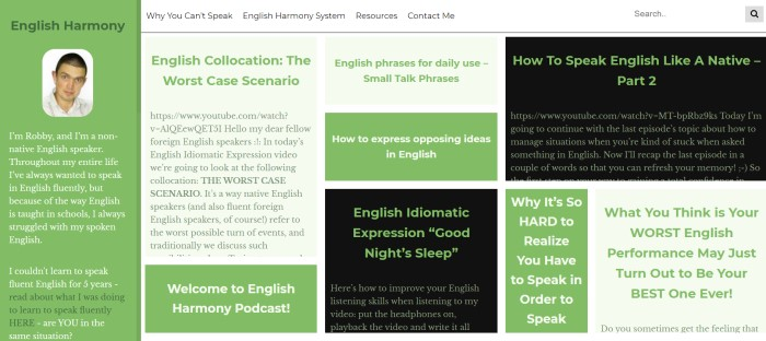 This screenshot of the home page for English Harmony has a photo of a dark-haired man in the upper left corner inside a green box, along with black, green, and light green boxes in the rest of the screen that are filled with text in green and white describing how English Harmony came to be and how it works.