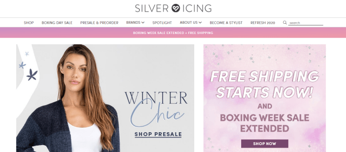 Silver Icing Website Screenshot showing a well-dressed woman