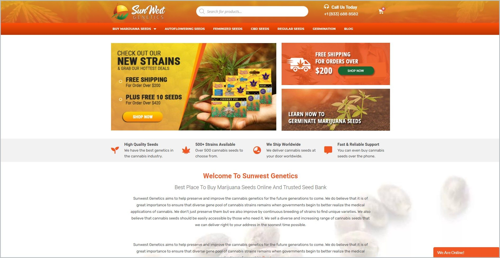screenshot of Sunwest Genetics homepage with orange header with print overlay of cannabis leaves, on it is the website's name and the search bar, underneath is the orange bar  with the main navigation bar