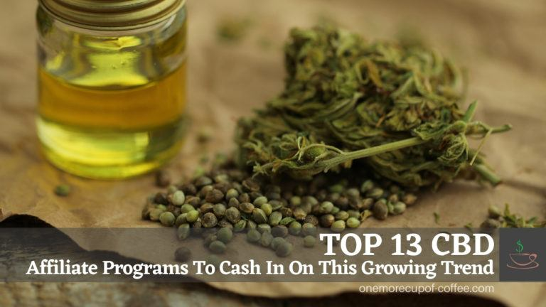 Top 13 CBD Affiliate Programs To Cash In On This Growing Trend featured image