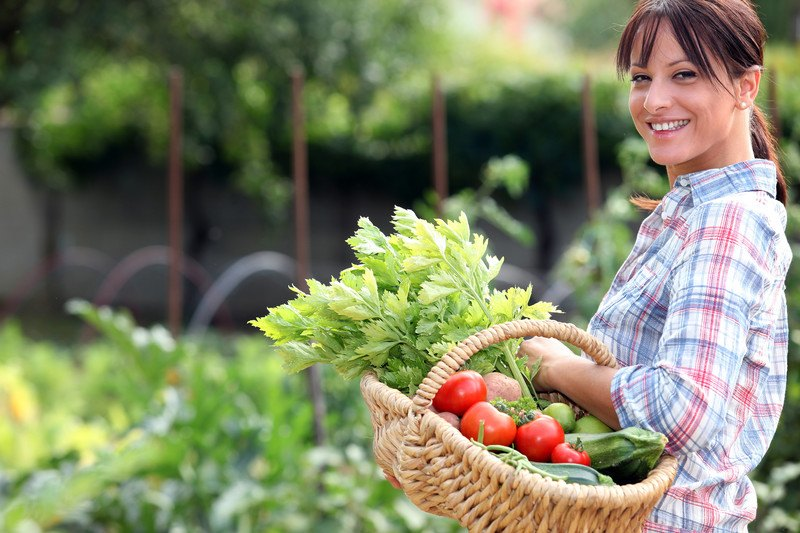 This photo shows a smiling brunette woman in a blue plaid shirt walking through some tall green plants with a basket of fresh vegetables on her arm, representing the best homesteading affiliate programs.