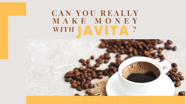 Can You Really Make Money With Javita feature image