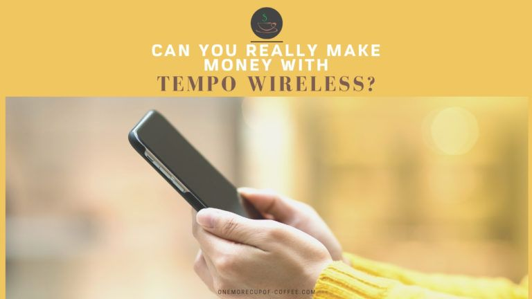 Can You Really Make Money With Tempo Wireless feature image