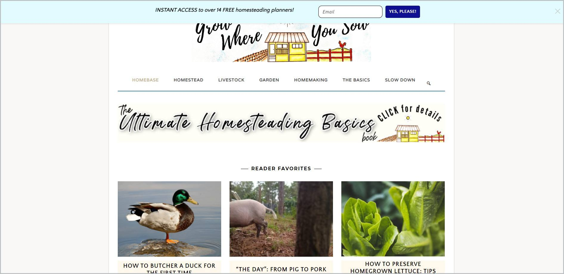 screenshot of Grow Where You Sow homepage with sky blue announcement bar, white header with the website's name and logo and main navigation menu