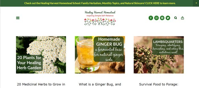 This screenshot of the home page for Healing Harvest Homestead has a green header with yellow text, a white background, a multi-colored logo, and pictures with text on green windows showing and describing different herbs and how to use them.