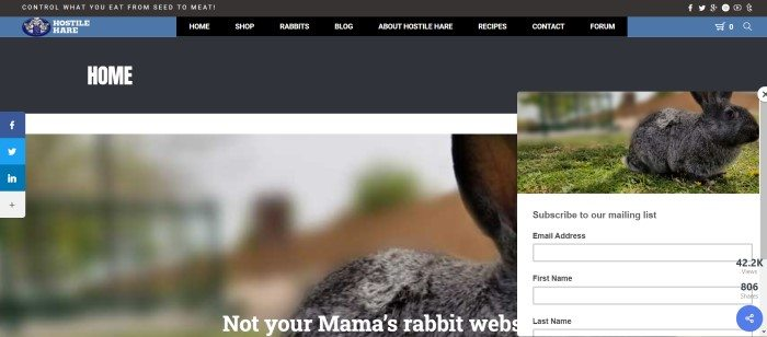 This screenshot of the home page for Hostile Hare Homesteading has a black header and navigation bar above a photo of a dark gray rabbit on the ground, along with an invitation box on the right side of the page for people who would like to sign up for the email list.