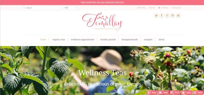 This screenshot of the home page for Femallay has a dark pink header announcing free shipping, a white navigation bar with a pink logo, and a large photo of a woman in a straw hat and a blue shirt picking leaves or berries off a plant in a raspberry patch.