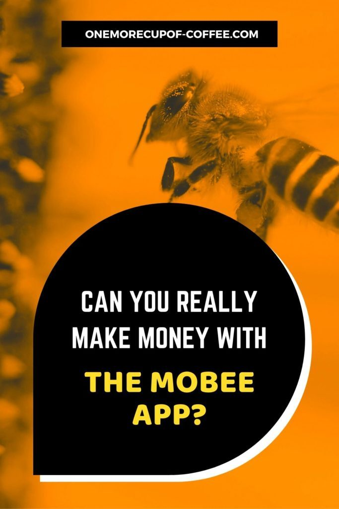 Can You Really Make Money With The Mobee App?