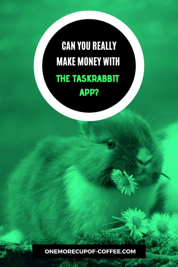 Can You Really Make Money With The TaskRabbit App?