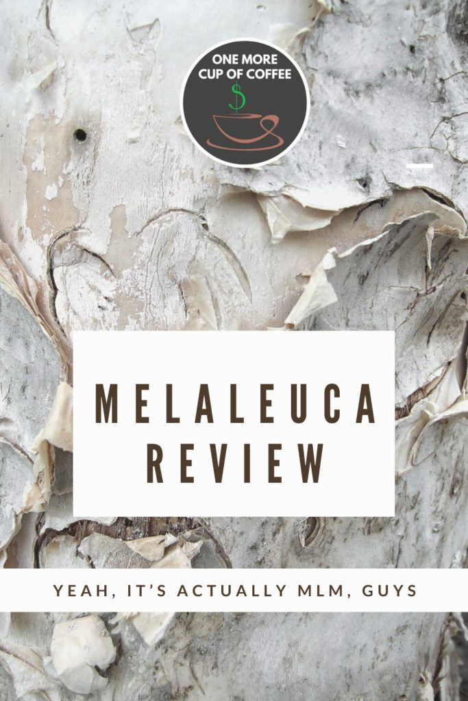 background image of melaleuca tree known as paper bark, with an overlay text