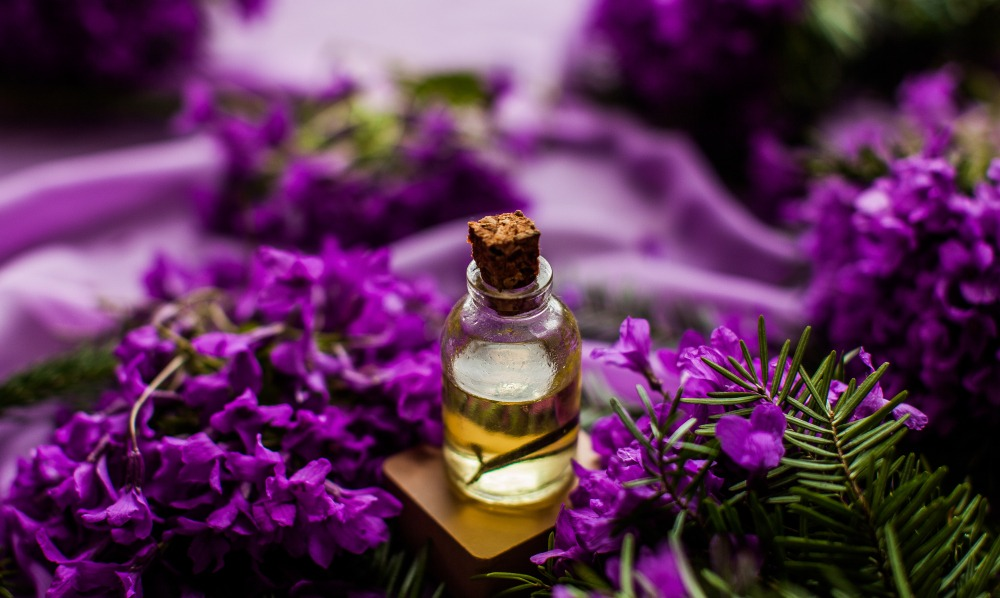 brilliant bright lavendar flowers with rosemary and essential oil bottle with rough cork