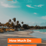 how much do travel bloggers with beach, surf, and palm trees