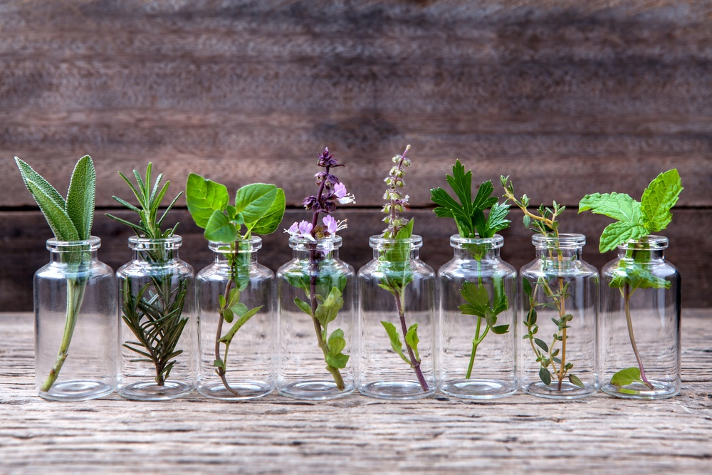 transparent essential oil bottles with fresh herbs inside