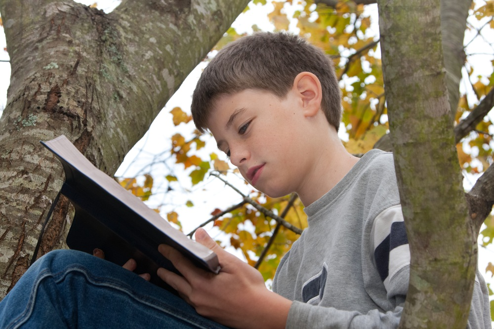 young boy sitting with a bible in a tree