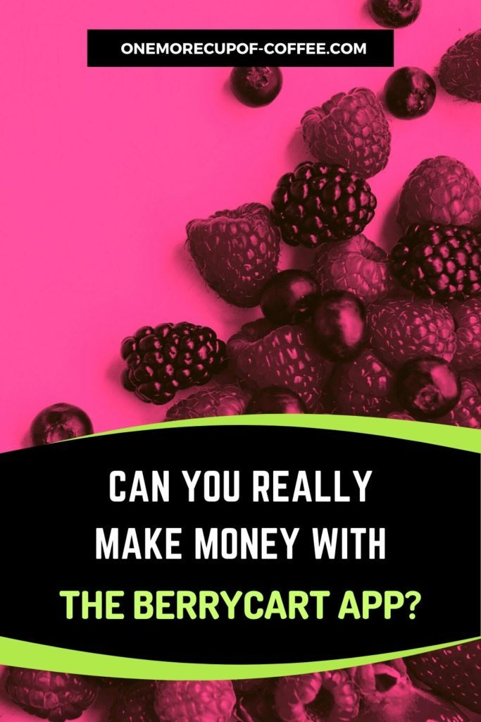 Can You Really Make Money With The BerryCart App?