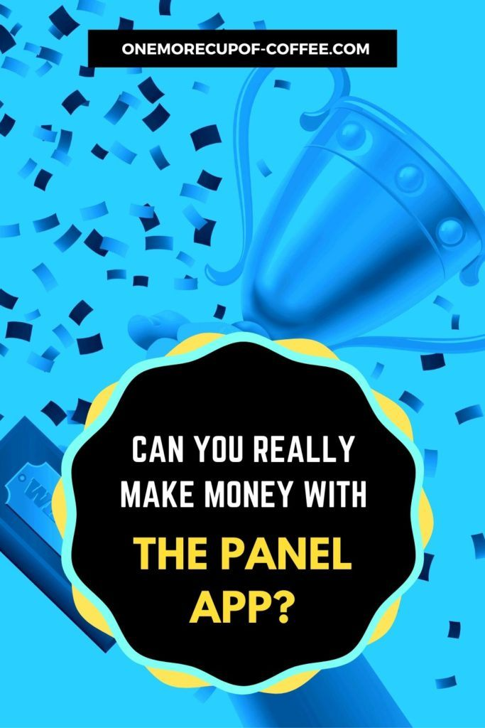 Can You Really Make Money With The Panel App?