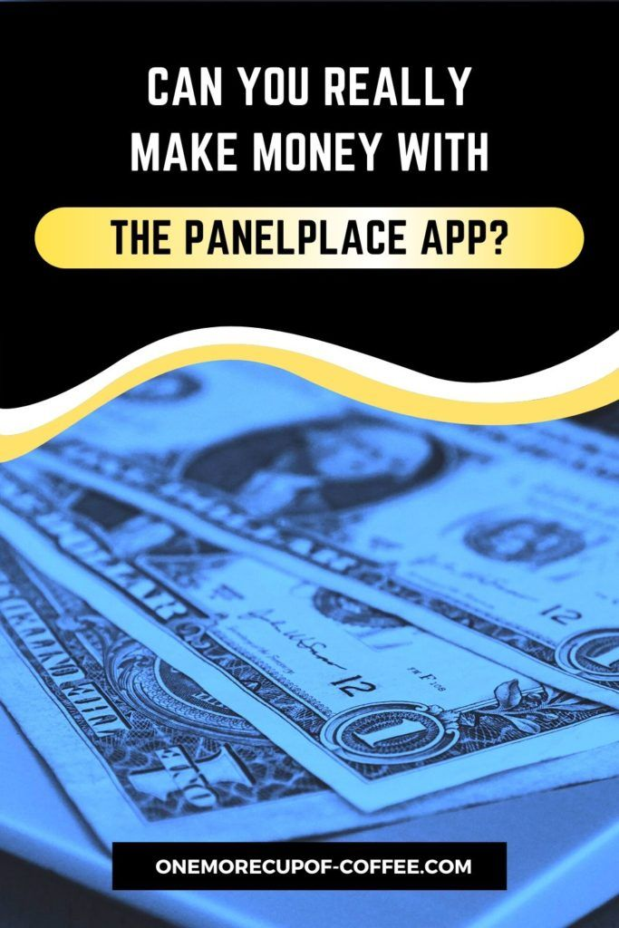 Can You Really Make Money With The PanelPlace App?