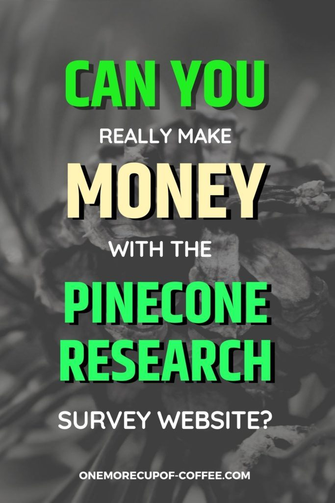Can You Really Make Money With The Pinecone Research Survey Website?