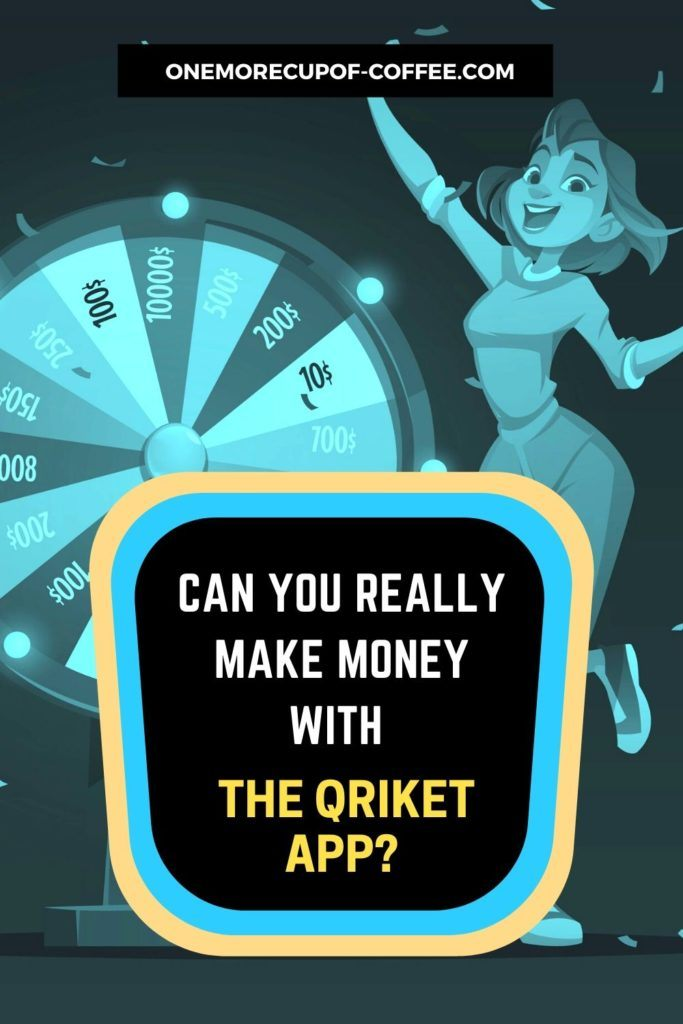 Can You Really Make Money With The Qriket App?