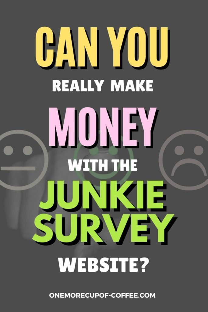 Can You Really Make Money With The Survey Junkie Survey Website?