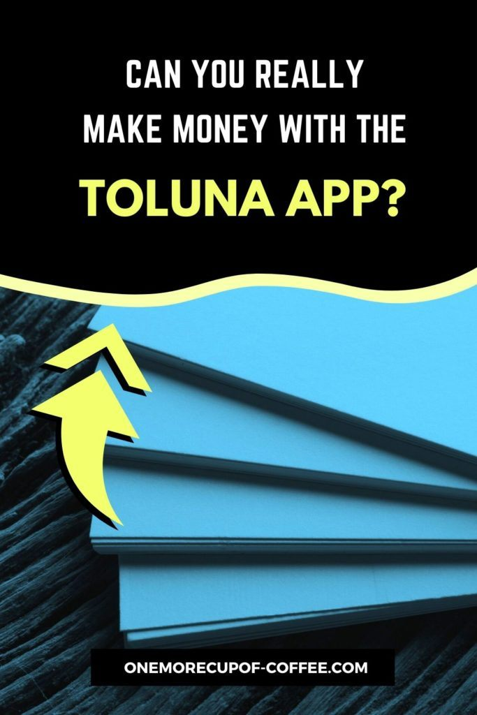 Can You Really Make Money With The Toluna App?