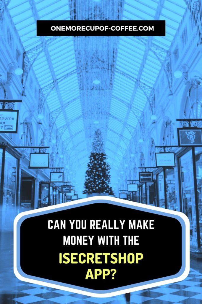 Can You Really Make Money With The iSecretShop App?