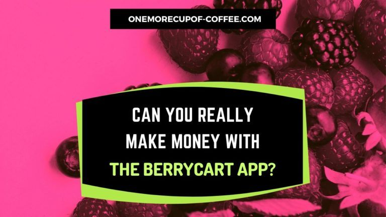 Make Money With The BerryCart App Featured Image