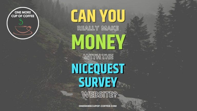Make Money With The Nicequest Survey Website Featured Image