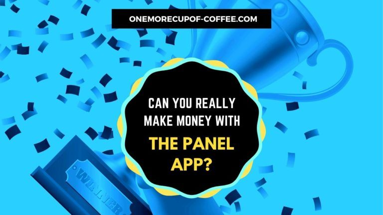 Make Money With The Panel App Featured Image