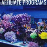 Top 10 Aquarium Affiliate Programs