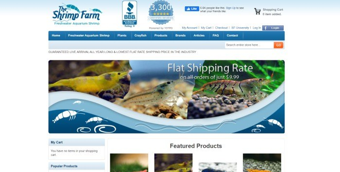This screenshot of The Shrimp Farm has a blue background, a darker blue navigation bar, and a photo of the inside of a shrimp aquarium containing red, yellow, and gray shrimp, above a row of small photos of featured product