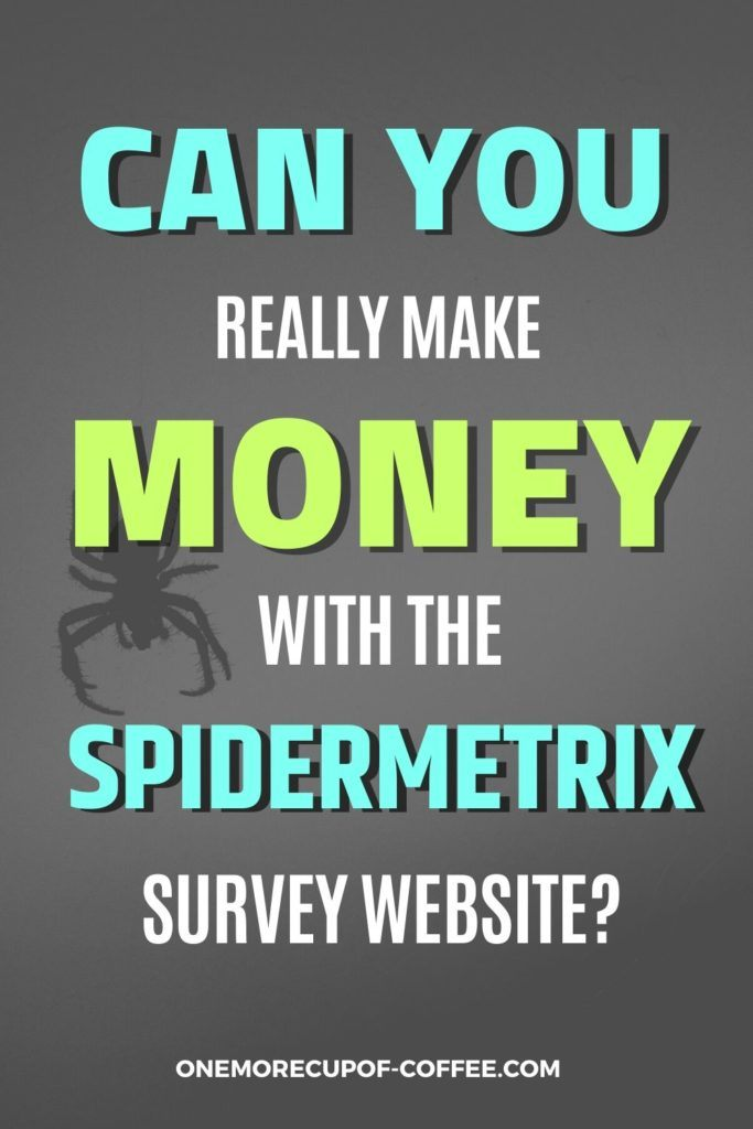Can You Really Make Money With The SpiderMetrix Survey Website?