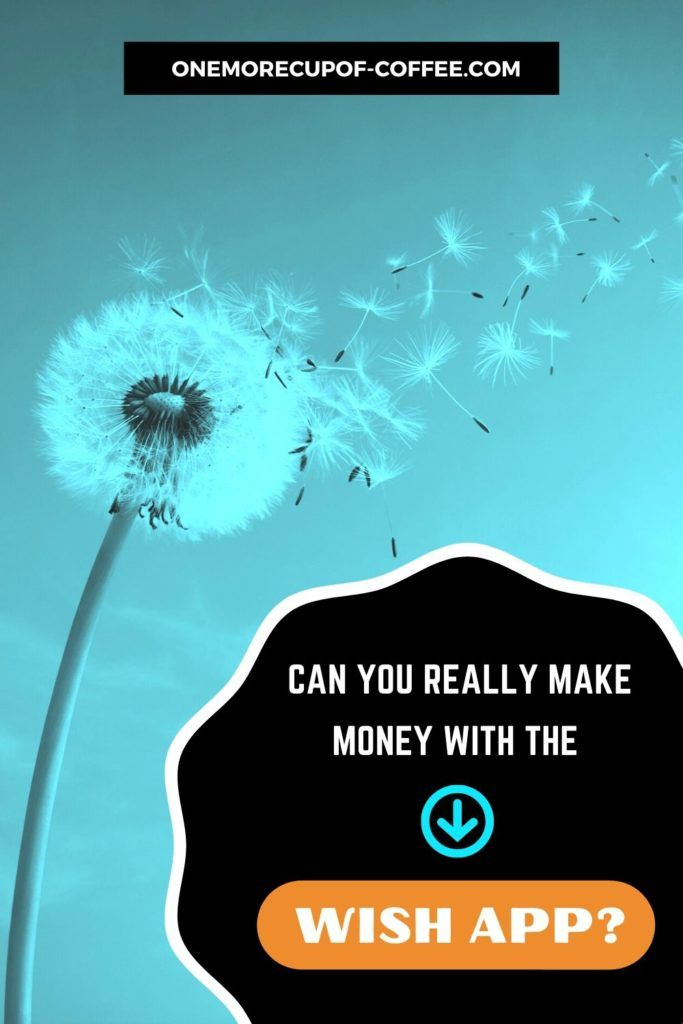 background image in turquoise tint of dandelion with text overlay