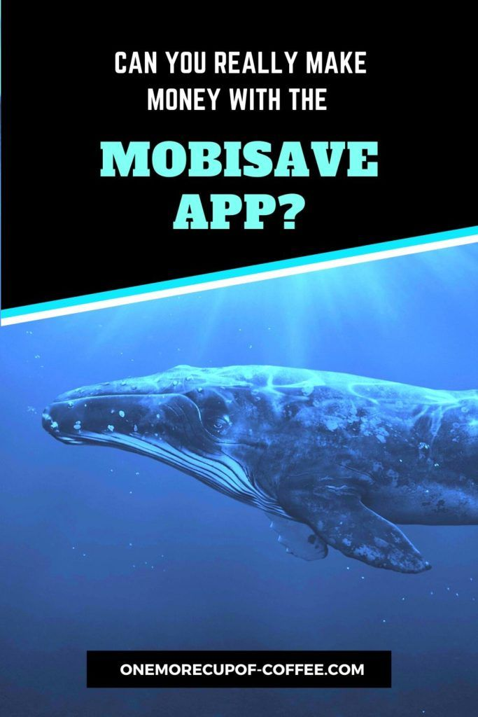 blue whale with text overlay in black background,