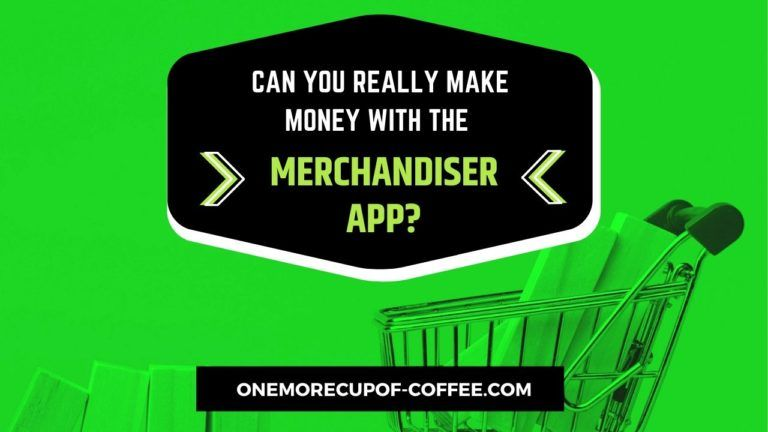 Make Money With The Merchandiser App Featured Image