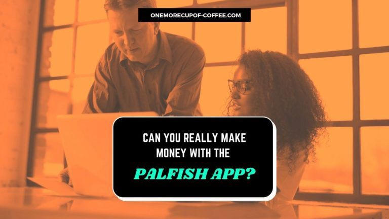 Make Money With The PalFish App. Featured Image