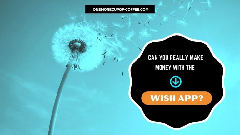 Make Money With The Wish App Featured Image