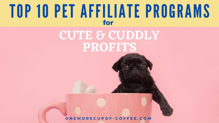 Top 10 Pet Affiliate Programs For Cute & Cuddly Profits feature image