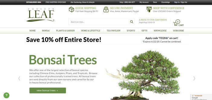 This screenshot of the home page of Easter Leaf has a black header, a white search bar with green and black text, a pale green navigation bar with black text, a white background in the main section with black and green text and a green call to action button on the left side of the page, and a photo of a green bonsai plant on the right side of the page.