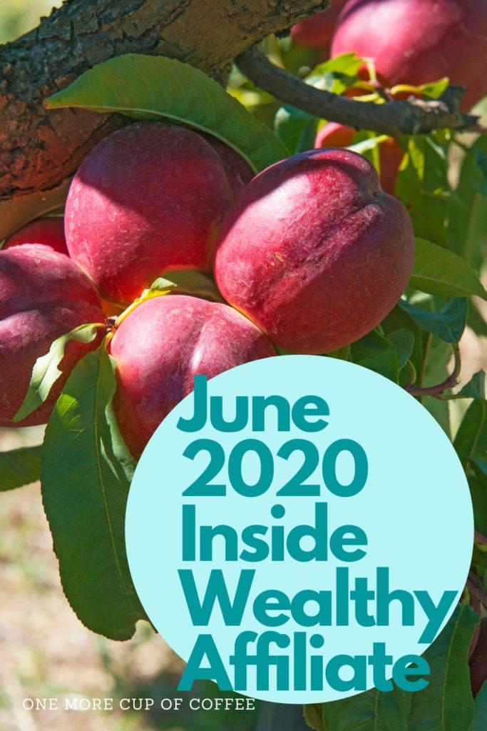 June 2020 Inside Wealthy Affiliate