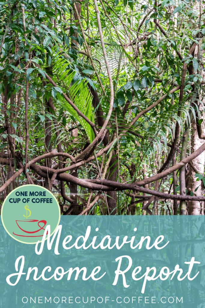 Mediavine Income Report