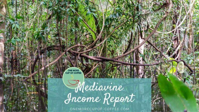 Mediavine Income Report Featured Image