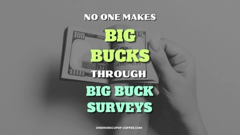 No One Makes Big Bucks Through Big Buck Surveys Featured Image