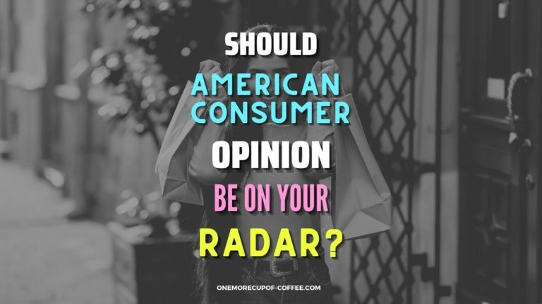Should American Consumer Opinion Be On Your Radar Featured Image