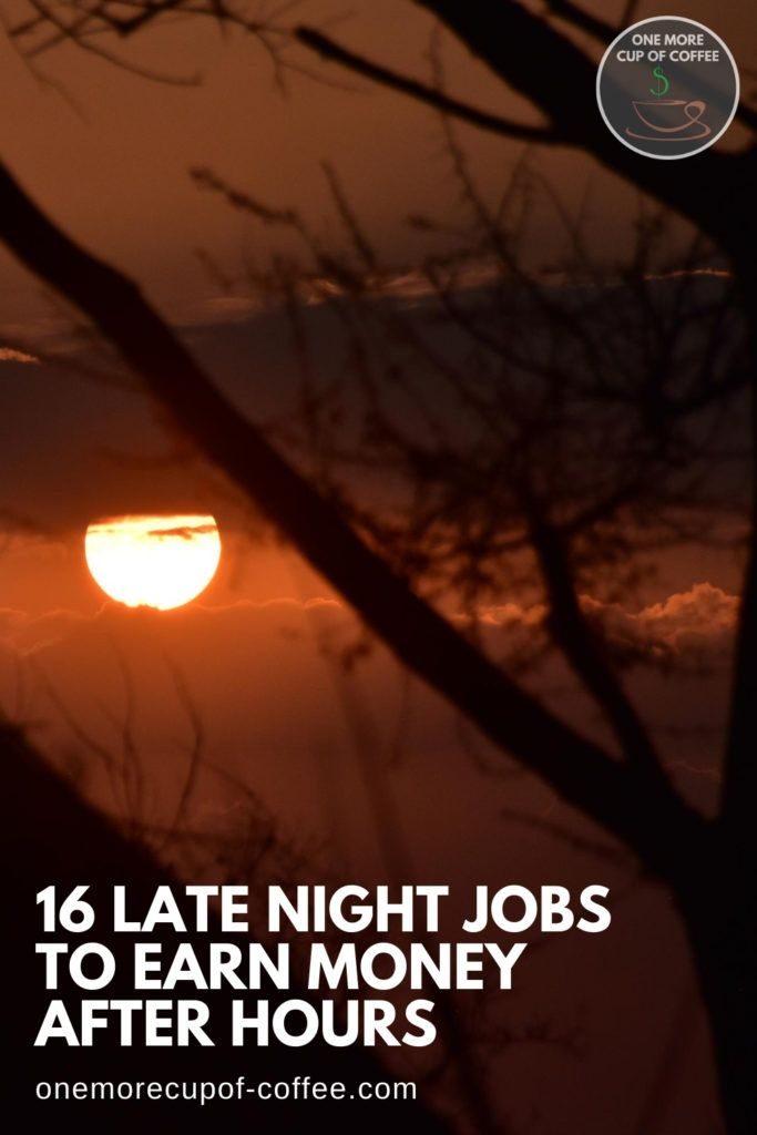 """image of moon at a distance shot through some tree branches, with text overlay """"16 Late Night Jobs To Earn Money After Hours"""""""