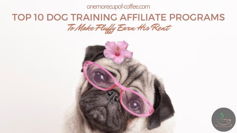Top 10 Dog Training Affiliate Programs To Make Fluffy Earn His Rent featured image
