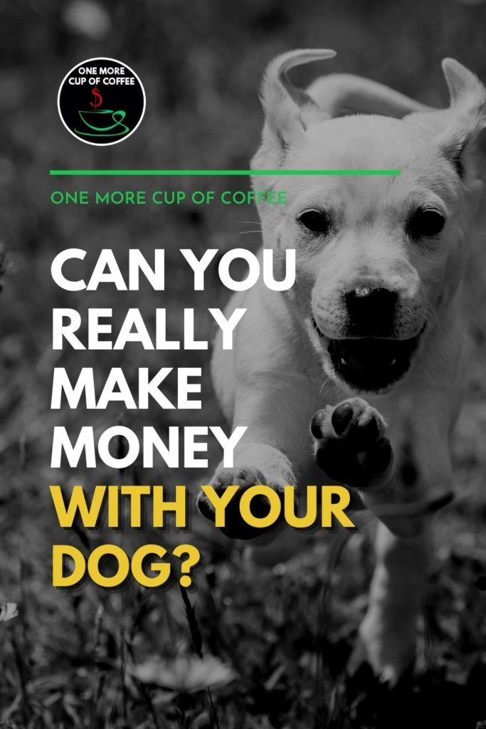 """black and white image of a dog running towards the camera, with text overlay """"Can You Really Make Money With Your Dog?"""""""