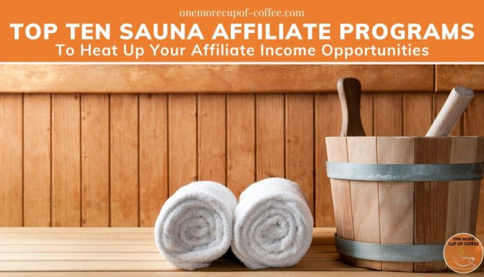Top Ten Sauna Affiliate Programs To Heat Up Your Affiliate Income Opportunities featured image