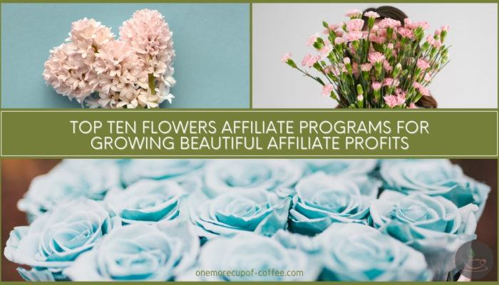 Top Ten Flowers Affiliate Programs For Growing Beautiful Affiliate Profits featured image