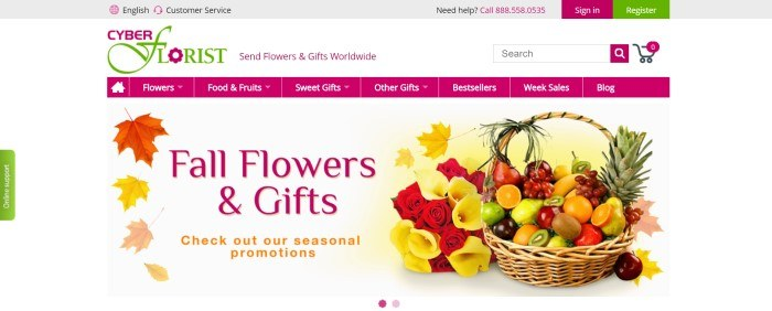 This screenshot of the home page for Cyber Florist has a gray header, a white search bar with pink and green text, a pink navigation bar, and a white main section with colorful maple leaves, pink text, and orange text on the left side of the page and photo showing yellow and red flowers with a colorful fruit basket on the right side of the page.
